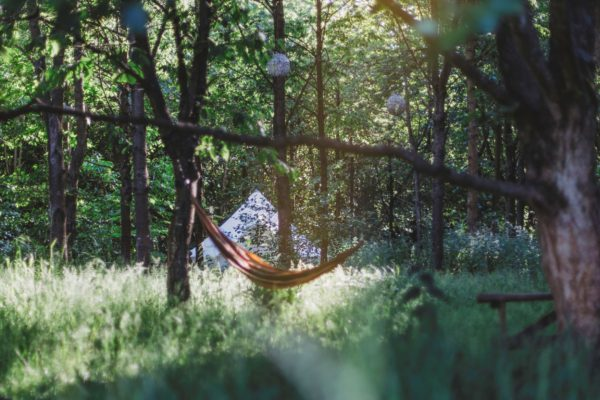 Bell Tent in Woodland