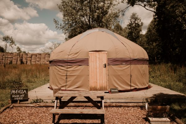 Mufassa Yurt 2